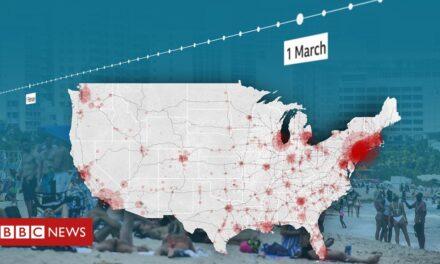 Coronavirus: las seis semanas perdidas cuando Estados Unidos no pudo contener la epidemia